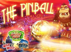 Il flipper 3D per iphone è Pinball HD!