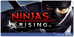 Ninja Rising su facebook.