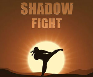 Shadow Fight, gioco di combattimenti su FB e G+