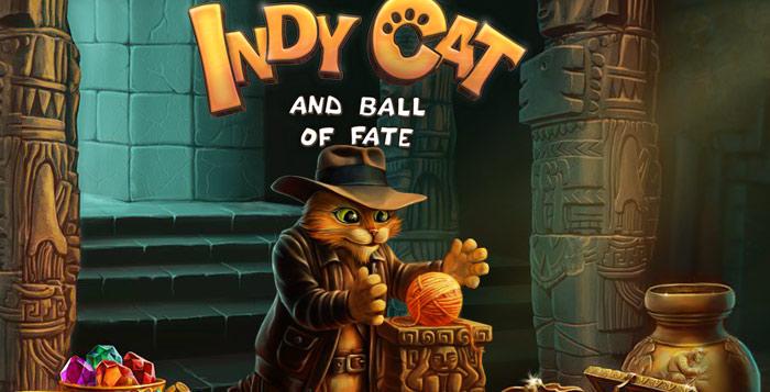 Indy Cat.